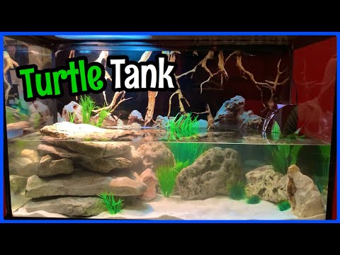 Setting Up A *Natural* TURTLE TANK! (30 Gallon)