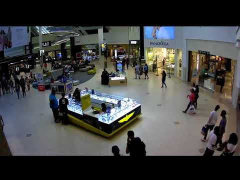 Florida Mall Distraction Theft