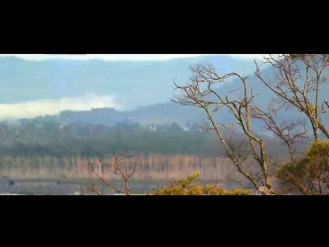 Lagu Dayak Kalimantan Barat - Kambang Bapanggel
