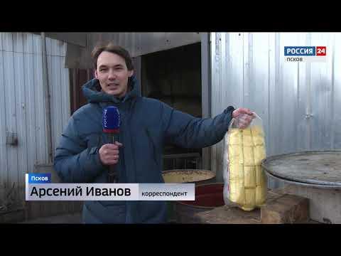 Вести-24.Псков 17.02.2020