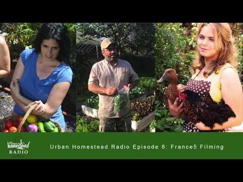 Urban Homestead Radio Episode 8: France 5 Filming