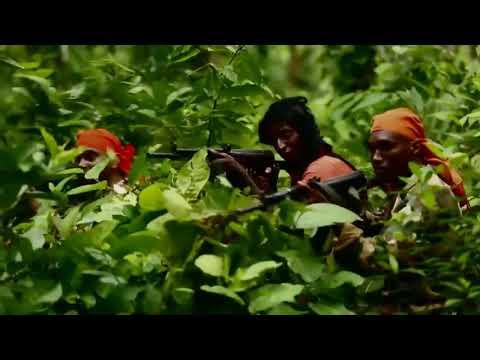 বাংলাদেশ আর্মি ট্রেনিং || দেখুন বাংলাদেশ আর্মিদের কি ভয়াবহ ট্রেনিং করতে  হয় ।Bangladesh Army Training - YouTube