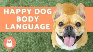 10 Dog BODY LANGUAGE Signs Your DOG is HAPPY 🐶✅