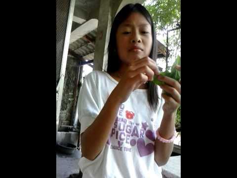 Jasmine is eating leaves