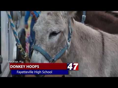 Donkey Hoops @ Fayetteville School 4/22/2017