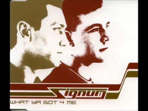 Signum - What Ya Got For Me (DJ Mellow-D Remix)