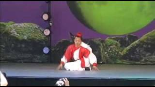 2011 hubei martial arts performers from china