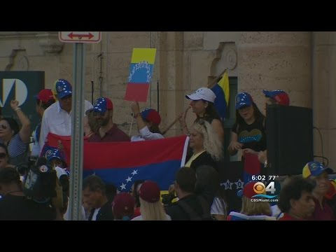 Rally At Freedom Tower Shows Support For Venezuela Protests
