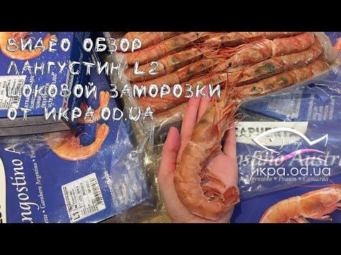 Видео обзор ЛАНГУСТИН крупная креветка L2 шоковой заморозки, купить опт и розница на икра.od.ua