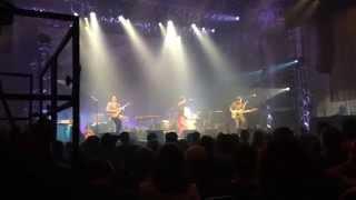 Hubert von Goisern: Snowdown - Live 2014