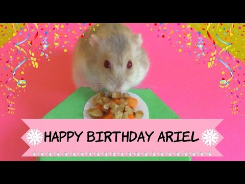 Happy Birthday Ariel