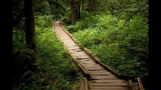 SpiceWood Valley Trail Hike, Austin