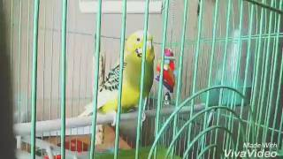 Клип Ричи- Мало так мало (Егор Крид)
