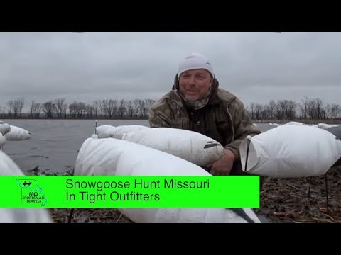 Snow Goose Hunt Missouri In Tight Outfitters