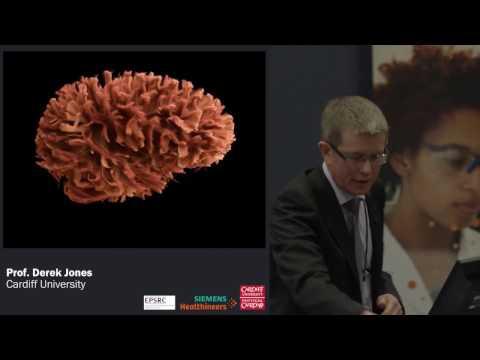 Connecting the Connectoms - Derek Jones