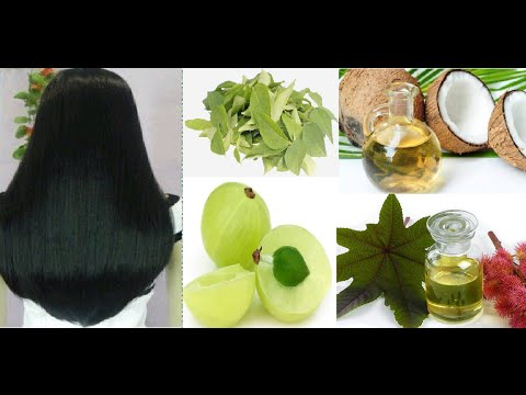 Homemade Herbal Magic Hair Growth Oil Prevents Dandruff Fall Gray