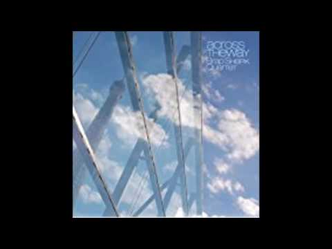 Brad Shepik Quartet - Across the Way