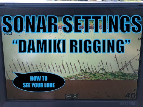 How To SEE YOUR LURE On Your Sonar