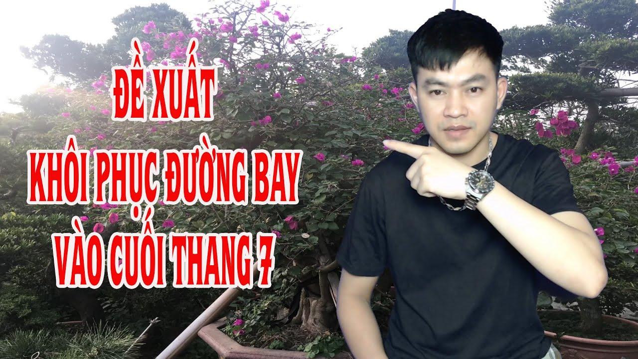 Đề Xuất Khôi Phục Dần Các Chuyến Bay Thương Mại Vào Cuối Tháng 7 Của Cục Hàng Không Việt Nam|Ba Vlog