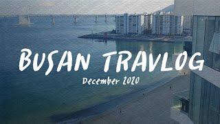 [남녀노소] 겨울에 떠나는 부산여행 #1 • 비타민SE…