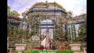 [Vietsub+Kara] 999 Roses of love by CVK