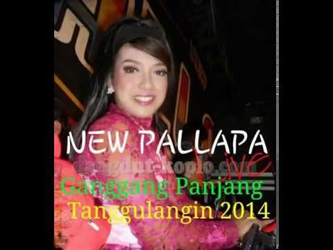 Lagu Dangdut Koplo Terbaru Youtube   New Palapa   Pedih   Bams Mc