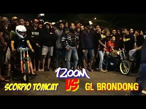 Kejam!! GL Brondong Proyek VS Scorpio Endus. Ninggal Sak Kecamatan Pak Eko 😂