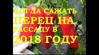видео Посадка перца на рассаду в 2018 году по лунному календарю
