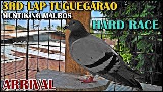 MUNTIK NA SILA  MAUBOS 3RD LAP TUGUEGARAO ARRIVAL