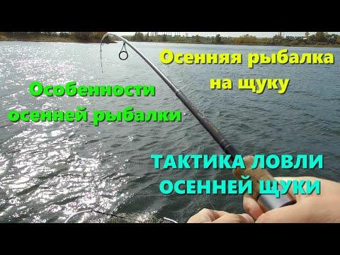 Осенняя рыбалка на щуку. Особенности осенней рыбалки. ТАКТИКА ЛОВЛИ ОСЕННЕЙ ЩУКИ