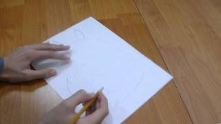 How to (Part 1) : Draw Totoro  Detailed!