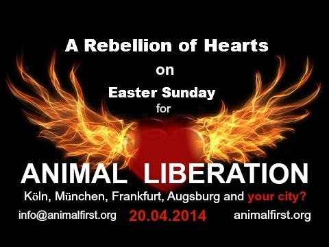 A Rebellion of Hearts on Easter Sunday: The Church Has Forgotten The Animals