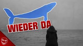 Die Blue Whale Challenge ist zurück! Neue Fälle deuten Rückkehr an!