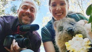 Baixar How to speak Australian English | Canguro English