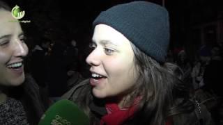 Pinheiro no Largo de S. Gualter anuncia festas Nicolinas
