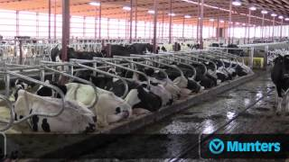 Munters solutions in Marti Farms dairy