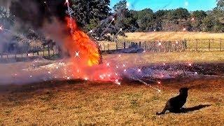 Первый новогодний подрыв ёлки [НГ на РР - 2013] | Разрушительное ранчо | Перевод Zёбры