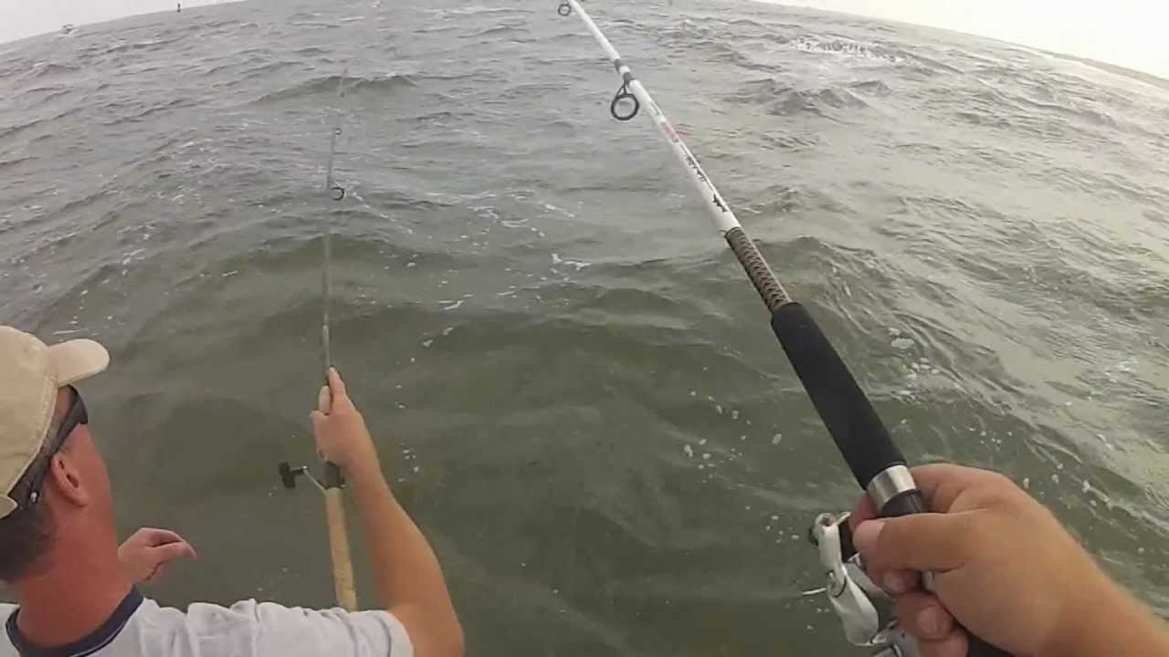 Fluke fishing sandy hook new jersey youtube for Fluke fishing nj