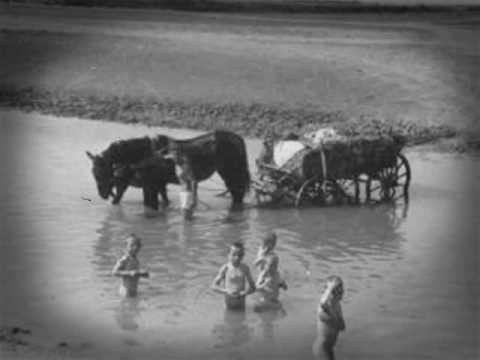 Doina Oltului / Olt river song