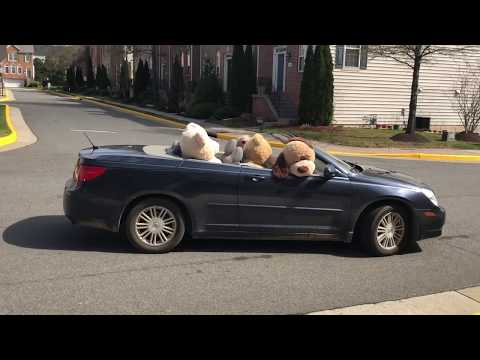 Road trip with five giant stuffed animals in a convertible