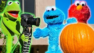 Cookie Monster and Kermit the Frog TRICK Elmo with a Pumpkin!