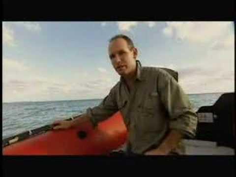 Survival Zone: Ocean: Food & Water