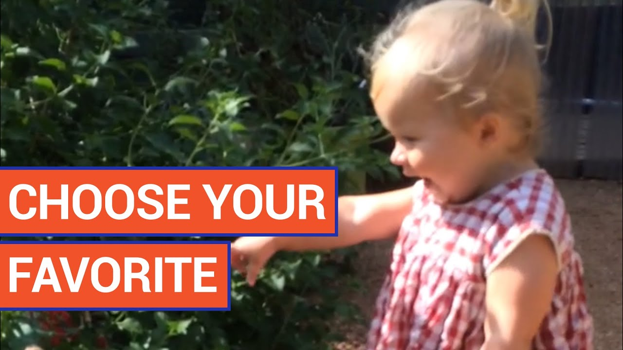 Cute and funny kids are so entertaining - vote for your favorite video 2016