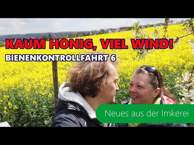 BKF #6-2021 Regen, Wind, Kälte | kleine Katastrophe | Honigmangel | Neues aus der Imkerei