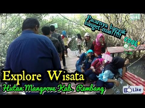 Pacaran di Hutan Mangrove??? || Explore Wisata Hutan Mangrove Rembang || uji mental jomblo