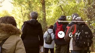 Caminar El Agua I Ruta por el río Manzanares Madrid