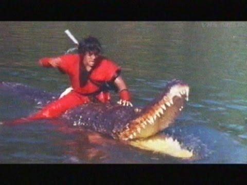 Dragon Ball: The Magic Begins - 1991 (VHS trailer)