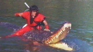 Dragon Ball The Magic Begins 1991 VHS trailer