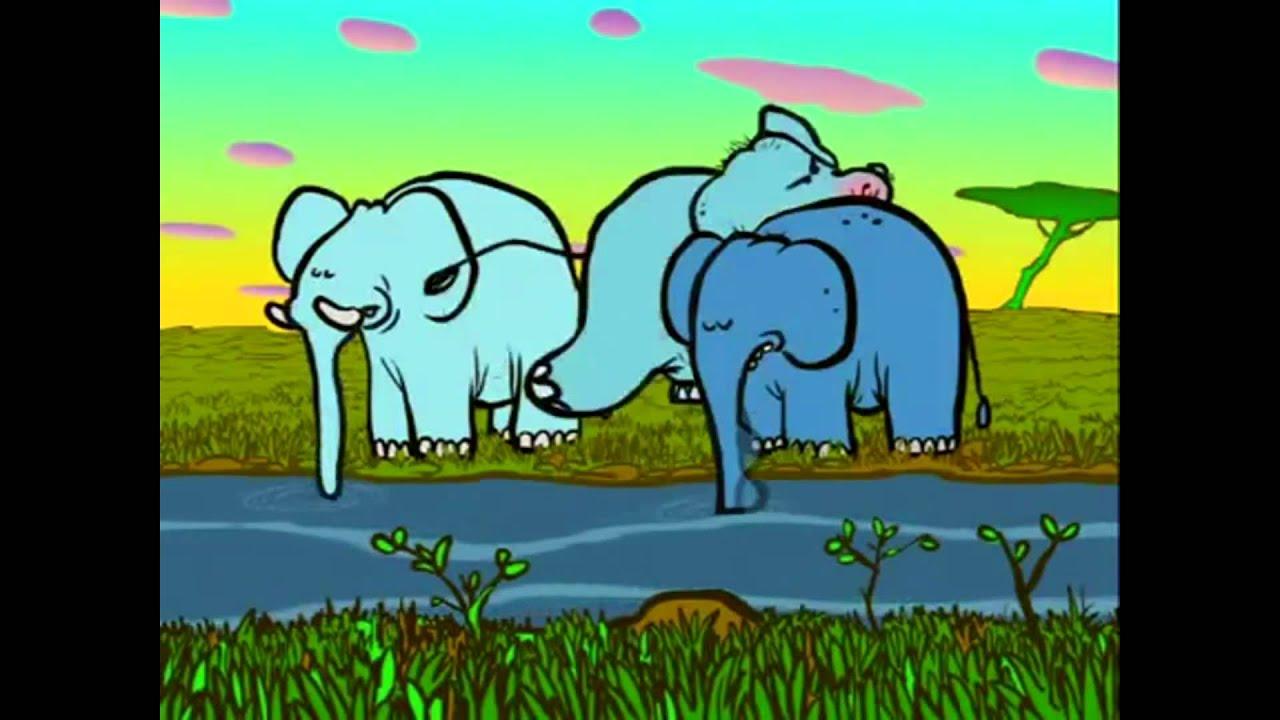 Kennst du schon? | Den Elefanten mit der Nase