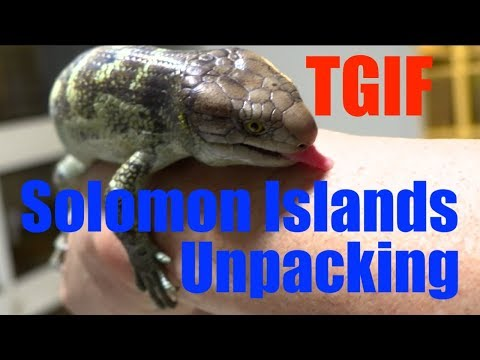 TGIF-Unpacking Solomon Islands